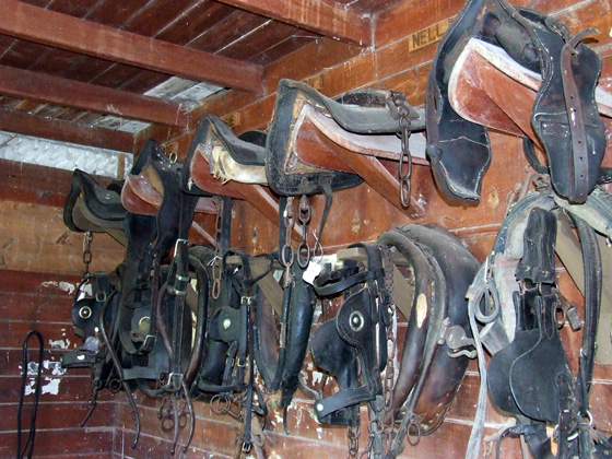 Saddle rack