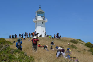 Open Day at Pencarrow Lighthouse