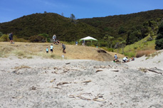 Mangahawea Bay excavation