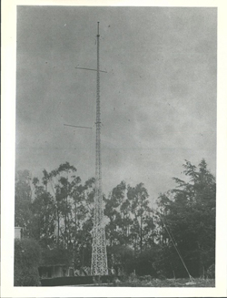 Radio Mast at Shag Valley Station